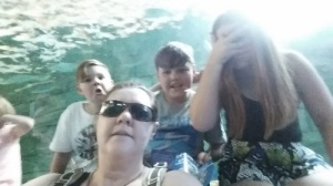 The clan at Sydney Aquarium